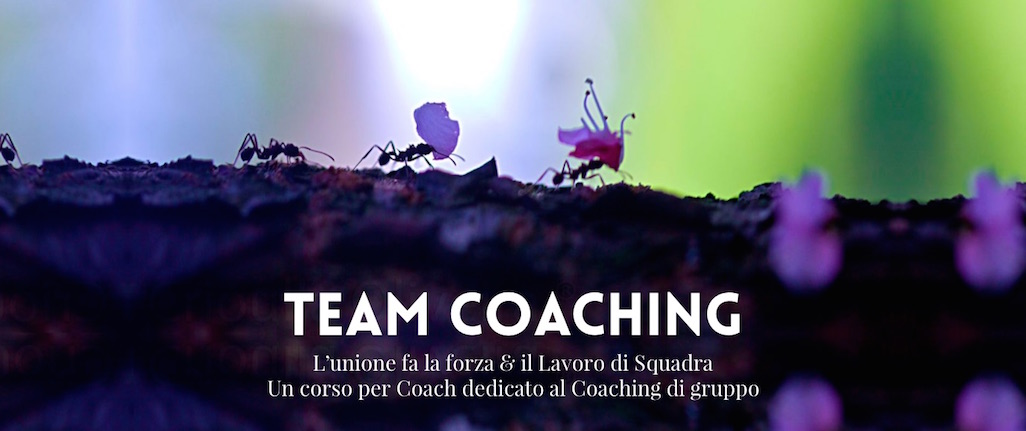 team-coaching-durga