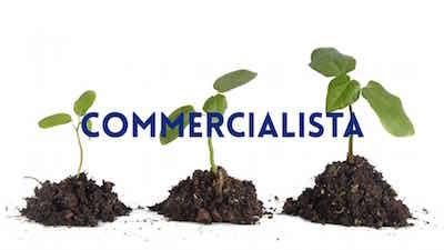Commercialista Convenzionato